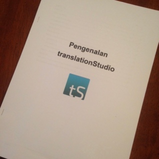 Introduction to translationStudio